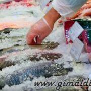 Купить свежую рыбу