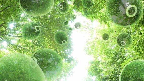 Был разработан тип бактерий, который будет производить самовозгорание