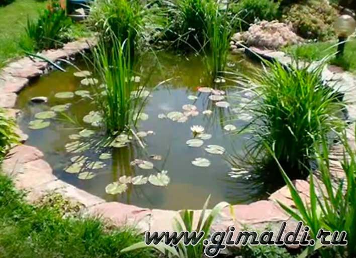 Садовый пруд на даче