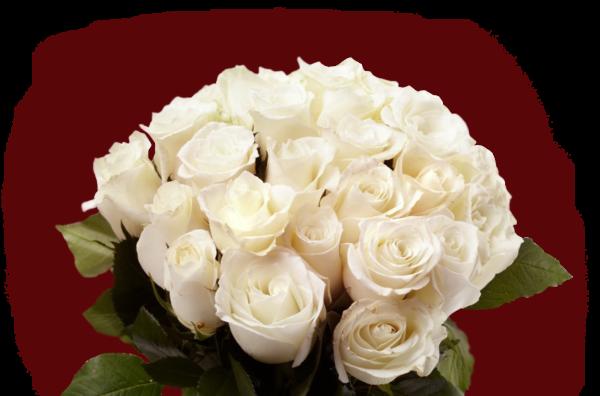 Доставка цветов Алматы